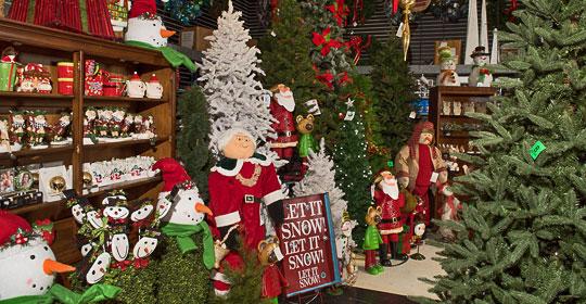 Store Photo - Christmas